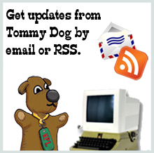 Subscribe to Tommy Dog's Blog